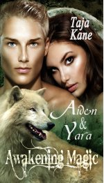 Buchcover Aiden & Yara, Awakening Magic (Band 2)