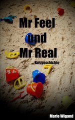 Buchcover Mr Feel und Mr Real